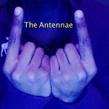 The Antennae