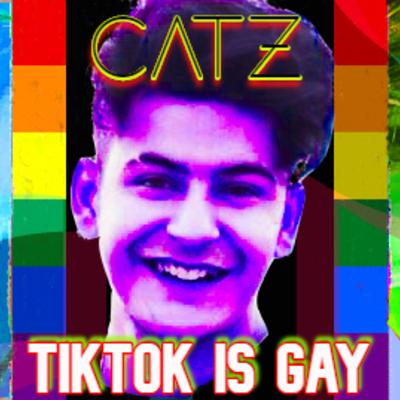 TikTok is GAY