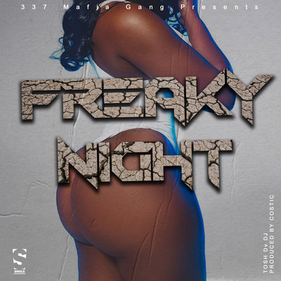 Tosh Dv Dj  - Freaky Night  (prod by Costic)